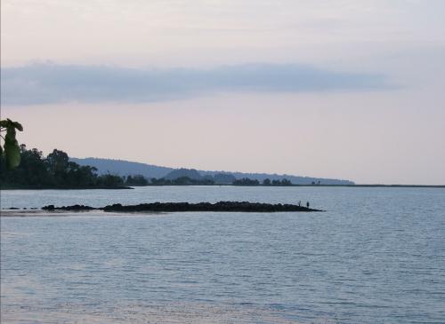 The lake tana